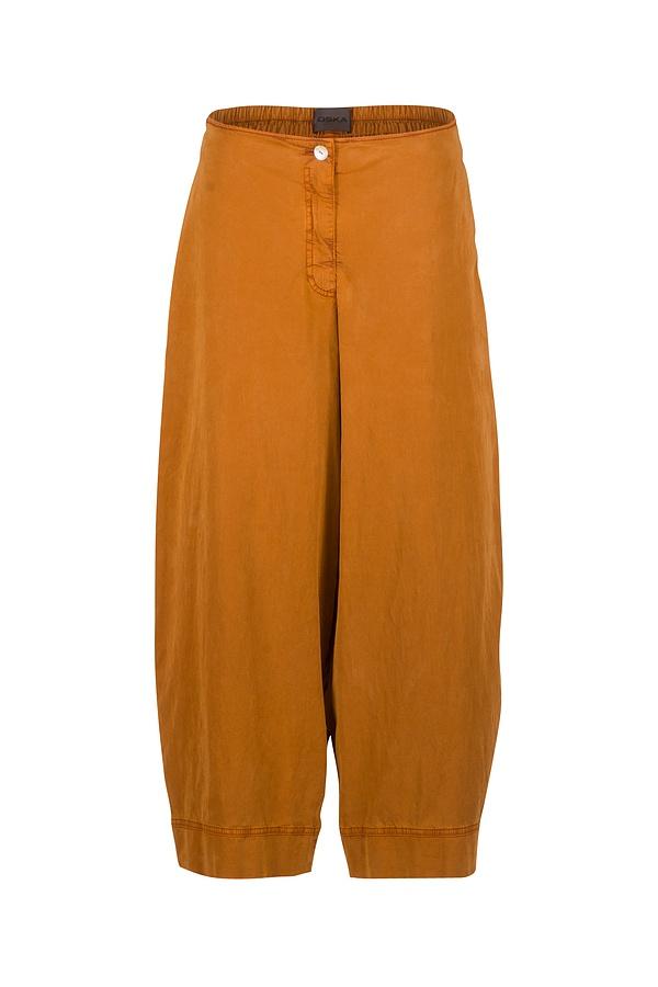 Trousers Aenna 039
