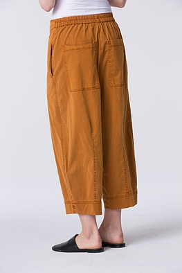 Trousers Aenna 039